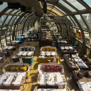 Рестораны, кафе, бары, Европейская кухня - Белый кролик