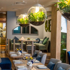 Рестораны, кафе, бары, Европейская кухня - Радуга