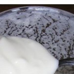 Рецепты индийской кухни - Домашний йогурт Дахи