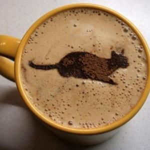 Алкогольные напитки - Кофе  Черный кот