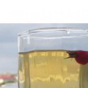 Шиповник - Напиток