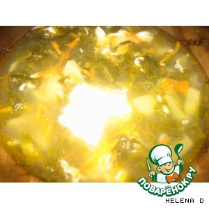 Щавель - Щавелевый суп