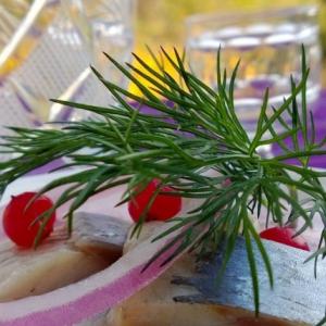 Брусника - Селедочка с брусничным соусом