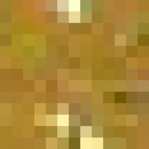 Лук-шалот - Свинина под соусом из корнишонов