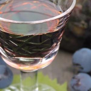 Гвоздика - Виноградная настойка Пряно-пьяная Изабелла